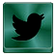 Twitter Page Link Icon